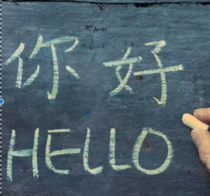 translators thrive in gig economy